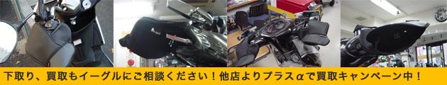 eagle_buy